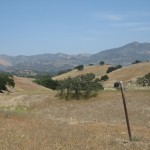 Paso Robles countryside