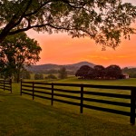 Sunrise at Fairfield